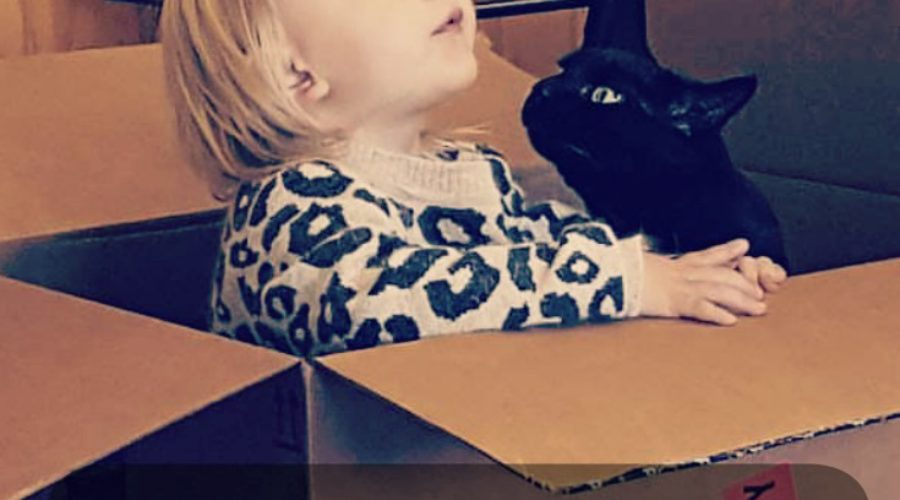 Pets & Babies can go together like Peas & Carrots